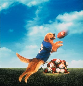 Air Bud Football Josh Air bud  golden receiverAir Bud Football Josh